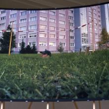 2000:3 Walter v Broekhuizen005