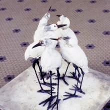 2002:1 John Sikking001